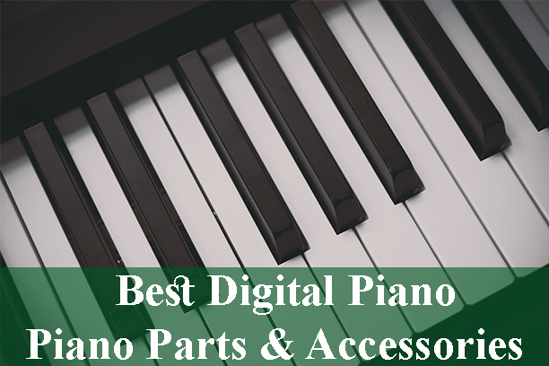 Best Digital Piano And Piano Parts Accessories Reviews 2019
