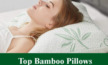 Top Bamboo Pillows Review 2021