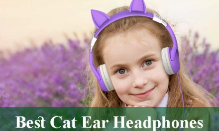 Best Cat Ear Headphones Review 2021