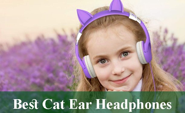 Best Cat Ear Headphones Review 2020