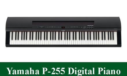 Yamaha P-255 Digital Piano Review 2021