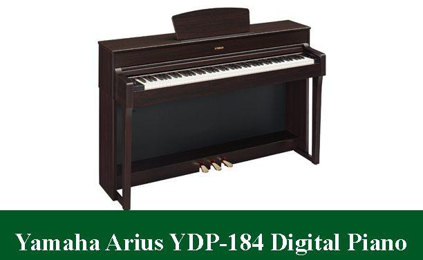 Yamaha Arius YDP-184 Digital Piano Review2021