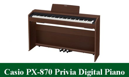 Casio PX-870 Privia Digital Piano Review 2021