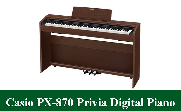 Casio PX-870 Privia Digital Piano Review 2020