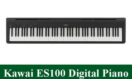 Kawai ES100 Digital Piano Review 2020