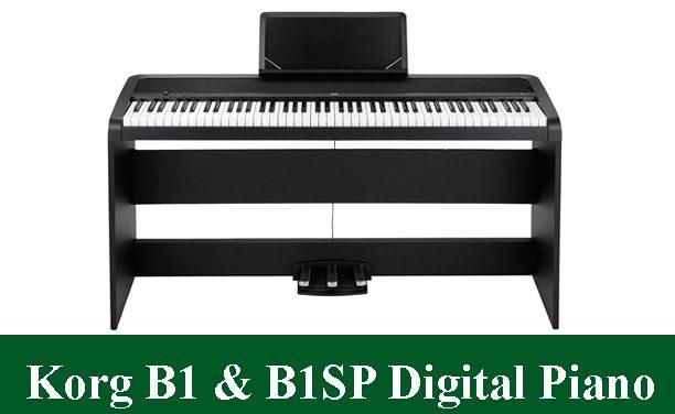 Korg B1 & Korg B1SP Digital Piano Reviews 2021