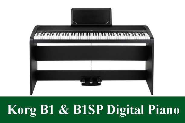 Korg B1 & Korg B1SP Digital Piano Review 2021