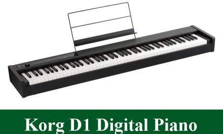 Korg D1 Digital Piano Review 2021