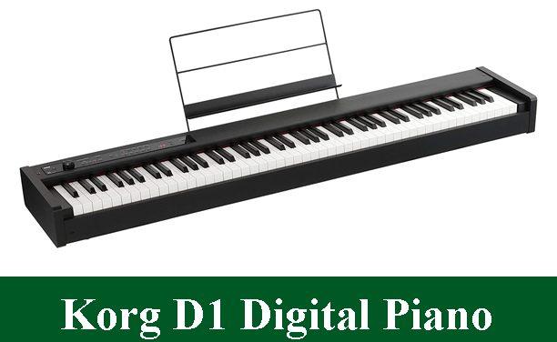 Korg D1 Digital Piano Review 2021