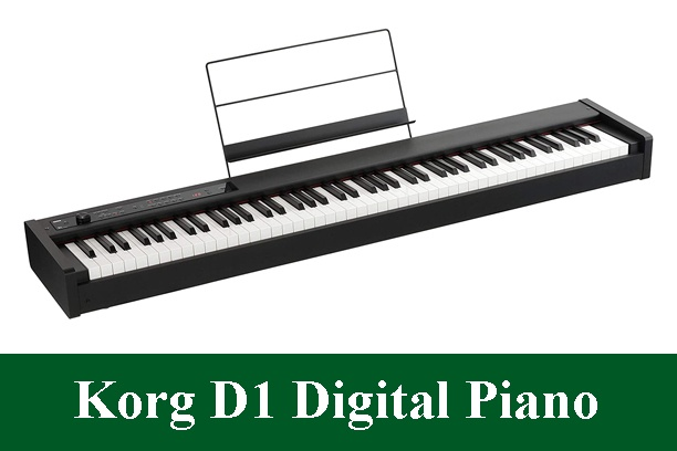 Korg D1 Digital Piano Review 2020