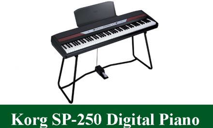 Korg SP-250 Digital Piano Review 2021