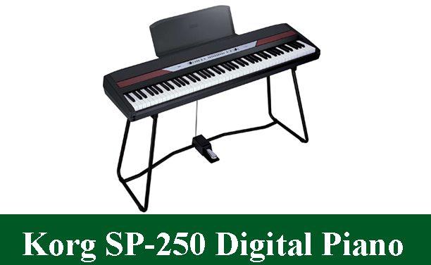 Korg SP-250 Digital Piano Review 2021