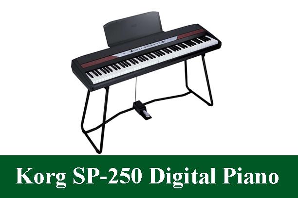 Korg SP-250 Digital Piano Review 2020