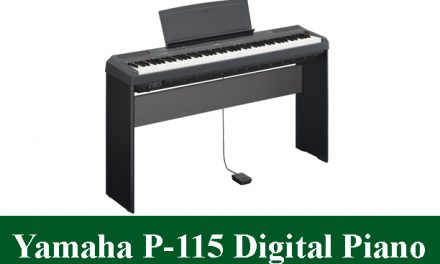 Yamaha P-115 Digital Piano Review 2021