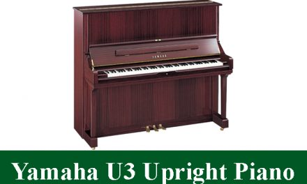Yamaha U3 Upright Piano Review 2021