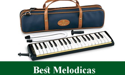 Best Melodicas Reviews 2020