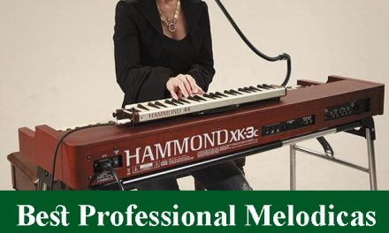 Best Professional Melodicas Reviews 2020