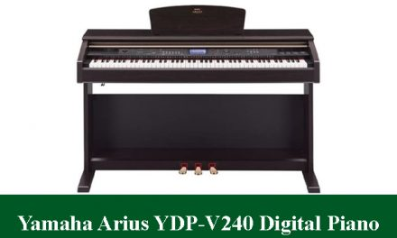 Yamaha Arius YDP-V240 Digital Piano Review 2021
