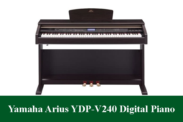 Yamaha Arius YDP-V240 Digital Piano Review 2020