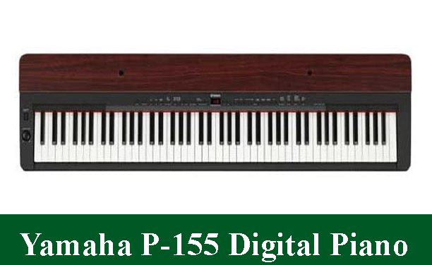 Yamaha P-155 Digital Piano Review 2021