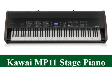 Kawai MP11 Professional Digital Stage Piano Review 2021